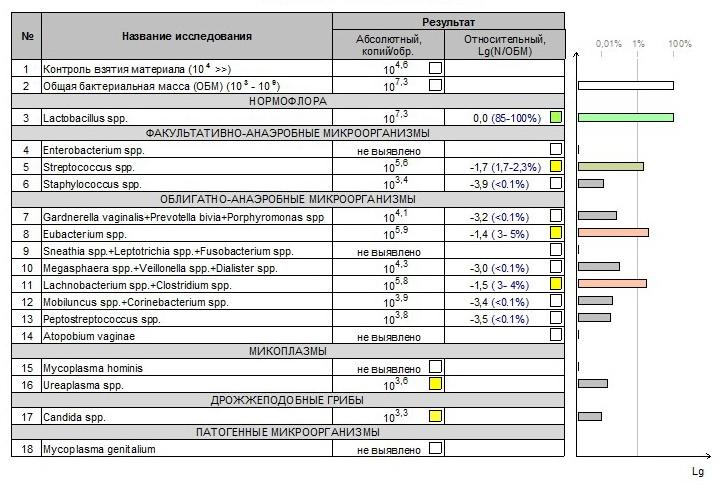 Транзиторная микрофлора у мужчин: картинки, показатели, причины и диагностика, стадии