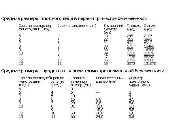 Размер плодного яйца и диаметр по неделям (таблица, фото и УЗИ), возможные патологии развития.